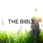 Without the bible
